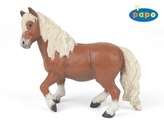 Pony shetlandský