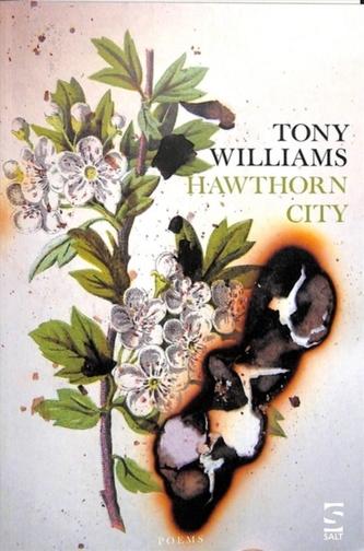 Hawthorn City Williams, Tony