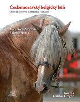 Českomoravský belgický kůň