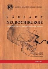 Základy neurochirurgie